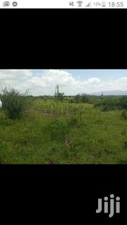 50 by 100 Plot for Sale in Narok Town | Land & Plots For Sale for sale in Narok, Narok Town
