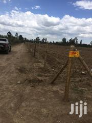 One Acre Plot On Sale Opposite Golliba Secondary | Land & Plots For Sale for sale in Kiambu, Gatuanyaga