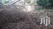 50 By 100 Land For Sale In Thindigwa Kiambu Road County ACRE | Land & Plots For Sale for sale in Kiambu, Township E