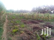Nyeri Githiru Two Acres | Land & Plots For Sale for sale in Nyeri, Kamakwa/Mukaro