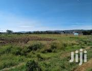 1/4 Acre Plot For Sale | Land & Plots For Sale for sale in Nakuru, Nakuru East