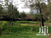 Ngong Half An Acre Plot For Sale | Land & Plots For Sale for sale in Kajiado, Ngong