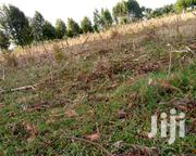 Two Acre Farm | Land & Plots For Sale for sale in Uasin Gishu, Moiben