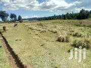 100 Acres TUMAINI OLKALOU 1.2M | Land & Plots For Sale for sale in Nyandarua, Leshau Pondo