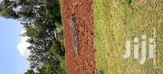 Parcel of Land 1acre | Land & Plots For Sale for sale in Migori, East Kanyamkago