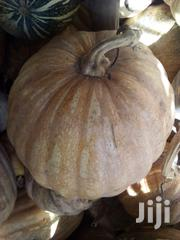 Organic Pumpkins | Meals & Drinks for sale in Kilifi, Magarini