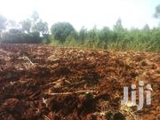 Land Near Opoda Farm | Land & Plots For Sale for sale in Siaya, North Sakwa (Bondo)