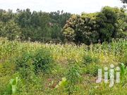 Gatitu-mugwathi | Land & Plots For Sale for sale in Nyeri, Mweiga