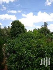 1acre Land | Land & Plots For Sale for sale in Embu, Mbeti North