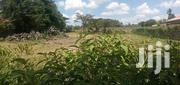 1/4 Acre For Sale | Land & Plots For Sale for sale in Nakuru, Njoro
