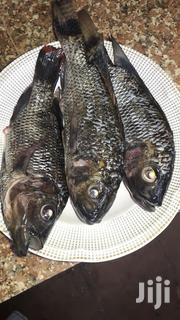 Fresh Tilapia Fish | Meals & Drinks for sale in Mombasa, Bamburi
