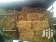 300 Hay Bales For Sale (Rhodes) | Feeds, Supplements & Seeds for sale in Laikipia, Ngobit