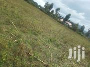 50 By 100 Plot Of Land | Land & Plots For Sale for sale in Nakuru, Bahati