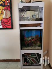 Aquarium With Cabinets | Fish for sale in Nairobi, Mugumo-Ini (Langata)