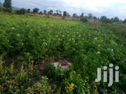 Two Acre in Passenga, Ol Kalou | Land & Plots For Sale for sale in Nyandarua, Karau