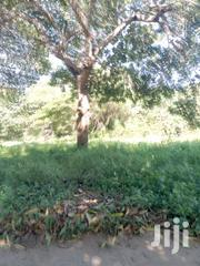 Farm Plot Suitable For Agricultural Activities.3acres With Title Deed. | Land & Plots For Sale for sale in Mombasa, Likoni