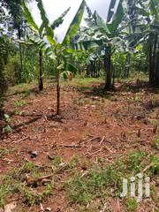 A 2bedroom House In 1/4 Piece Of Land,Borehole$ Electricity Installed | Houses & Apartments For Sale for sale in Tharaka-Nithi, Igambang'Ombe