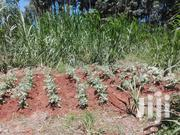 50×100 Piece of Land on Sale | Land & Plots For Sale for sale in Embu, Gaturi North