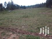 One And A Half Acre Land For Sale | Land & Plots For Sale for sale in Kakamega, Koyonzo