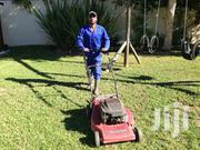 Emergency Tree Cutting & Gardening Services | Landscaping & Gardening Services for sale in Nairobi, Nairobi Central