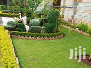 Landscaping & Design | Building & Trades Services for sale in Nairobi, Kasarani