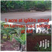 1 Acre At IgíKíRo Sitted On Tarmac Road. | Land & Plots For Sale for sale in Murang'a, Kamahuha
