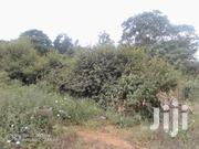 2.5 Acres Kaveta . Kitui | Land & Plots For Sale for sale in Kitui, Kyangwithya East