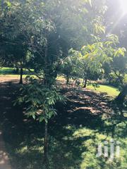 1.3 Acres of Land in Kilimani Off Arwings Khodhek Rd. Freehold | Land & Plots For Sale for sale in Nairobi, Kilimani