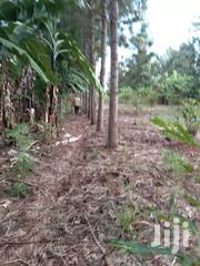 Land For Sale   Land & Plots For Sale for sale in Kirinyaga, Baragwi