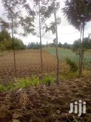 Olkalau Nyandarua County 1 Acre Land For Sale | Land & Plots For Sale for sale in Nyandarua, Wanjohi