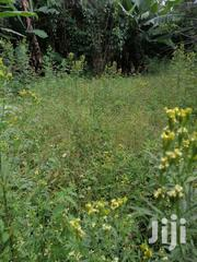 1/8th Acre Ruringu-chorogi | Land & Plots For Sale for sale in Nyeri, Ruring'U