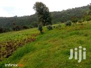 3 Acres - Nyandarua, Tumaini | Land & Plots For Sale for sale in Nyandarua, Mirangine