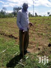 3 Acres Of Land | Land & Plots For Sale for sale in Bungoma, Ndalu/ Tabani