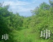 2.5 Acres, 3rd Row Beach Land, Near The Sands Resort Chale Island   Land & Plots For Sale for sale in Kwale, Ukunda