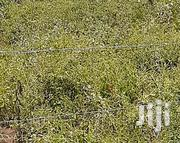 Plot For Ssle 50*100 | Land & Plots For Sale for sale in Nakuru, Subukia