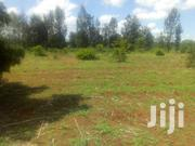 50x100ft Residential Plots For Sale At Mwea V.I In Kirinyaga County. | Land & Plots For Sale for sale in Kirinyaga, Mutithi