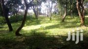 5acres Quick Sale In Old Muthaiga On Sale At 110M Per Acre. | Land & Plots For Sale for sale in Nairobi, Karura