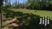 0.03ha Mowlem Kisumu | Land & Plots For Sale for sale in Kisumu, Kolwa Central