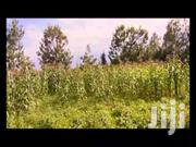 One Acre | Home Accessories for sale in Kakamega, Mayoni