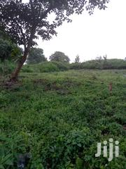 1/4 Acre Land Located in Gamerock, Nyeri 200m From Le Pristine Hotel. | Land & Plots For Sale for sale in Nyeri, Rware