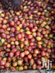 Tree Tomato Very Fresh Directly From Farm | Meals & Drinks for sale in Nairobi, Embakasi