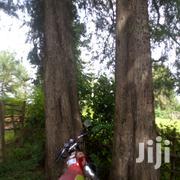 3 Points For Sale | Land & Plots For Sale for sale in Kericho, Kapkatet