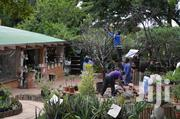 Landscaping Services Nairobi /Landscape & Garden Designs | Landscaping & Gardening Services for sale in Nairobi, Westlands