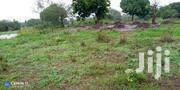 Land On Sale Kinondo 1 Acre 700,000/ | Land & Plots For Sale for sale in Kwale, Kinondo