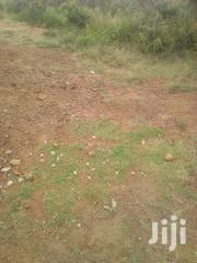 Fullplot On Sale ( 50 M X100 M ) | Land & Plots For Sale for sale in Bungoma, Bukembe East