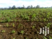 1 Acre Land For Sale At Gikono In Murang'a County3 | Land & Plots For Sale for sale in Murang'a, Kimorori/Wempa