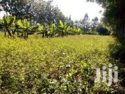 Quarter Acre Plot For Sale In Kiserian, Pipeline Road | Land & Plots For Sale for sale in Kajiado, Ongata Rongai