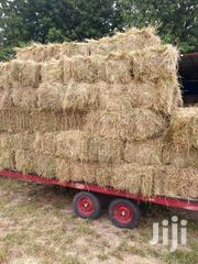 Boma Rhodes Bales For Sale @250 | Feeds, Supplements & Seeds for sale in Uasin Gishu, Kapsoya