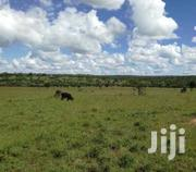 Prime Plot For Sale In Migori Town 100 By 100   Land & Plots For Sale for sale in Migori, Ragana-Oruba