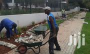 Affordable Gardening/ Landscaping Tree & Lawn Maintenance | Landscaping & Gardening Services for sale in Nairobi, Westlands